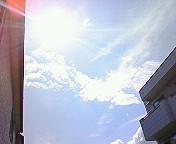 初夏の日射し